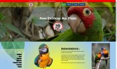 Diseño web exclusivo