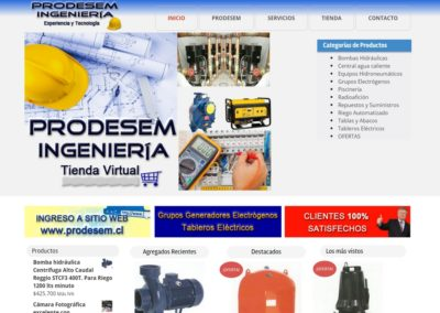 Prodesemingenieria.cl