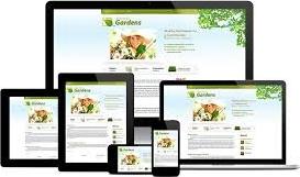 Precio Sitio Web